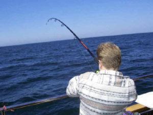 wędkowanie morskie